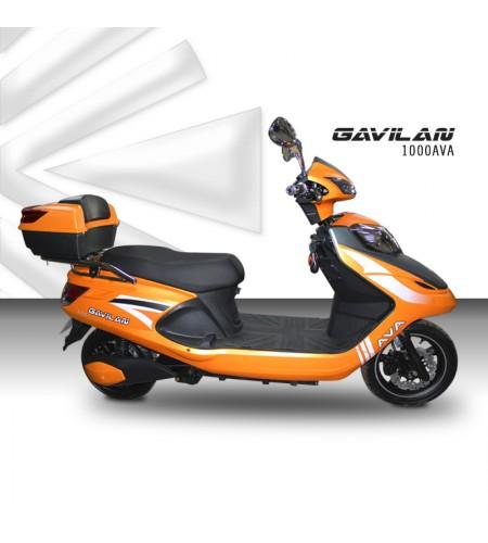 Gavilan AVA1000