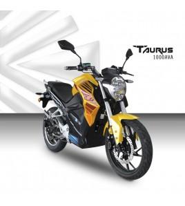 Taurus AVA1000