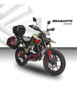 Brabante AVA250S